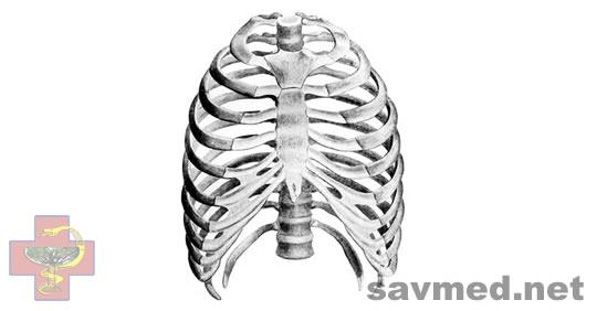 Травмы грудной клетки реферат по травматологии